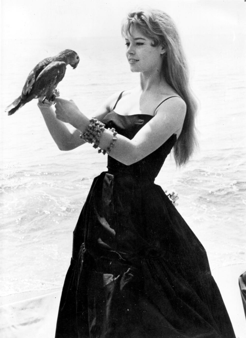 Nuovo film su Brigitte Bardot