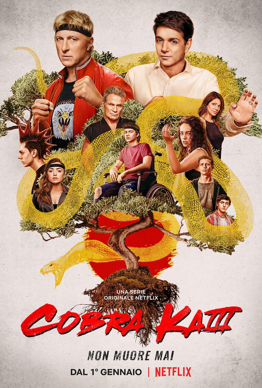 Serie Tv Cobra Kai, stagione 4